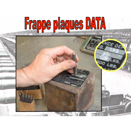 Frappe data plates